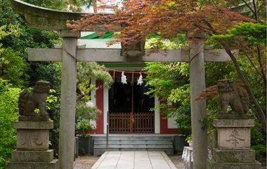 麄香神社参道